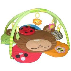 Simple Dimple Flower Friends Activity Playgym - Bear